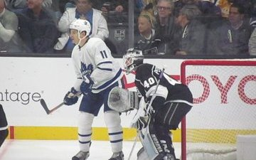 Image for Hyman's Importance to the Leafs
