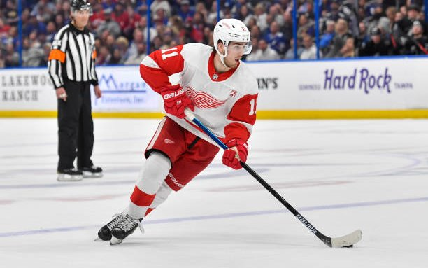 Image for Aggressive Filip Zadina Key in Detroit Red Wings Victory