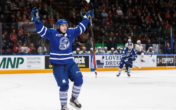 Image for Toronto Marlies Sign 5 OHLers to ATOs