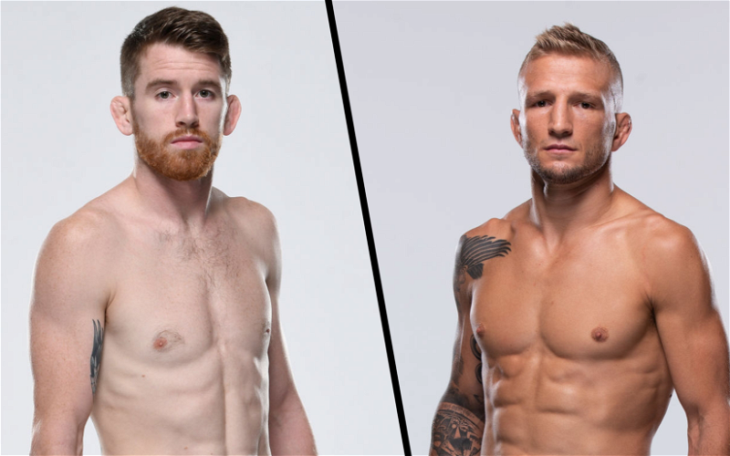 Image for T.J. Dillashaw vs Cory Sandhagen Booked for UFC Fight Night on May 8