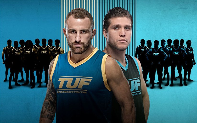 Image for TUF 29: Fighters To Watch