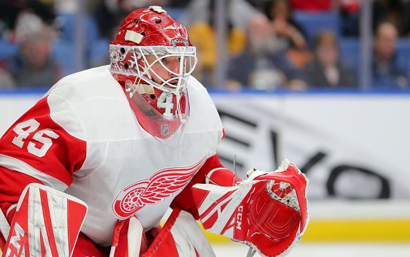 Image for Detroit Red Wings Expansion Draft Options