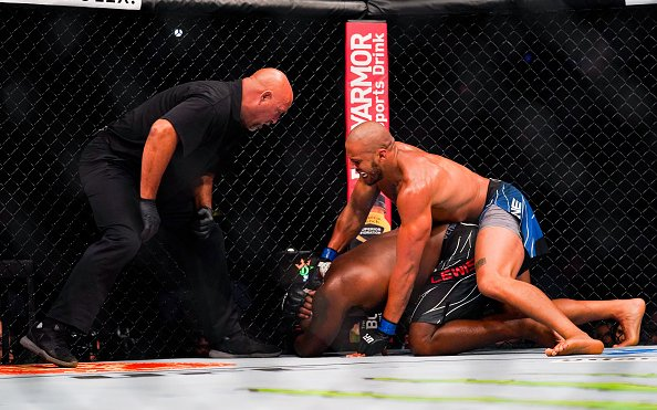Image for UFC August 2021 Recap: Fight Stats + Takeaways