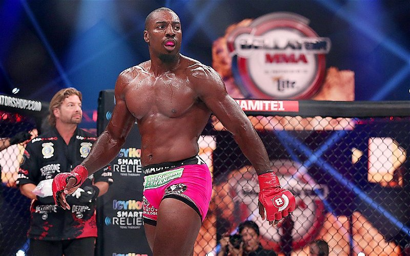 Image for Bellator 266: Results and Takeaways