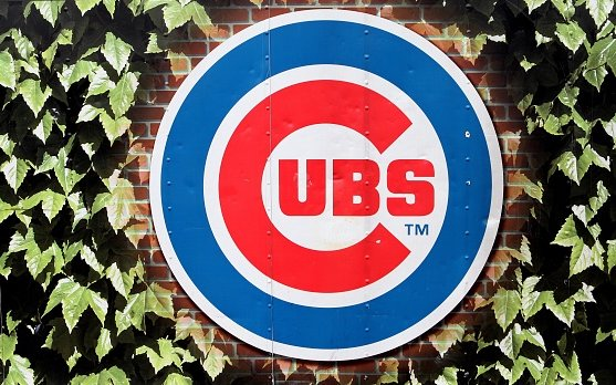 Image for Ricketts Family Good for the Cubs